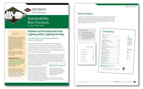 corporate sustainability case studies