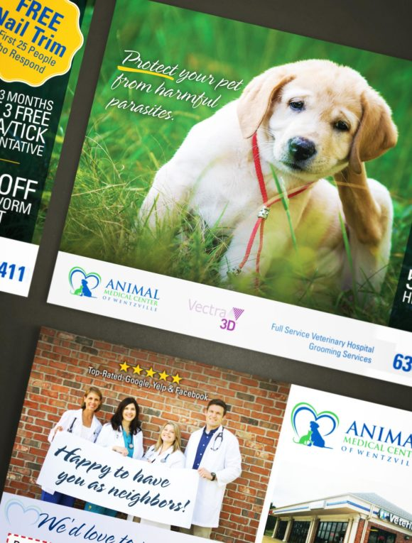 Animal Medical Center Postcard